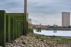 泰晤士河石渣银行,背景的金丝雀码头 图库摄影
