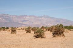 泰特斯峡谷,加利福尼亚,美国 免版税库存照片