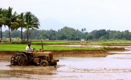 泰米尔・那杜,农业的印度 库存照片