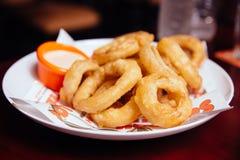 洋葱圈服务用在白色板材的调味汁在酒吧 库存图片