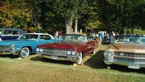 洛克维尔, MD,美国, 2017年10月:减速火箭的汽车的自由露天陈列 老Cadillacs,人们行敬佩汽车 股票视频
