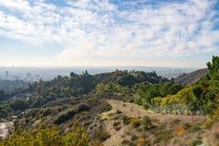 洛杉矶看法从好莱坞Hills的 进城la 好莱坞露天剧场 日观察的猫坐温暖晴朗的结构树 在蓝天的美丽的云彩 图库摄影