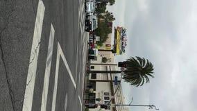 洛杉矶,美国- 2019年5月9日:垂直的录影 名望好莱坞步行  股票录像