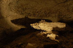 洞冰kingur喜欢鼠标石头 免版税库存图片