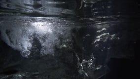 洞的潜水者 股票视频
