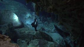 洞的潜水者 股票录像