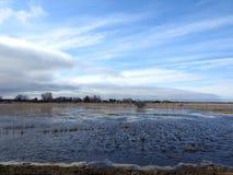 洪水区域、家和多云天空,立陶宛 图库摄影
