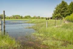 洪水区域在内布拉斯加 免版税库存图片