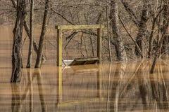 洪水反射 免版税库存图片