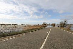 洪水风景视图在Welney,英国英国的 库存图片