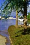 洪水 库存照片