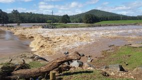 洪水Oxenford,昆士兰,澳大利亚 库存图片