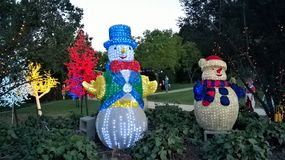 洪特尔谷圣诞灯在澳大利亚 免版税库存照片