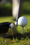 活动高尔夫球运动员 免版税库存图片