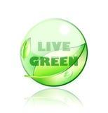 活的绿色 免版税库存照片