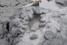 活跃起泡在泥火山- Baratang海岛,安达曼尼科巴群岛,印度 库存照片