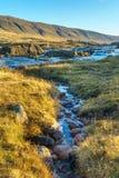 流入一条快速的山河的小河在黎明 免版税库存照片