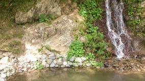 流入河的瀑布 库存图片