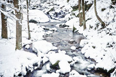 流冬天 库存图片