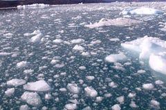 流冰格陵兰 免版税库存照片