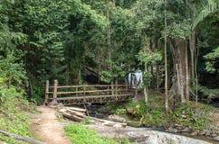 流动从山的木桥和瀑布在酸碱度 图库摄影