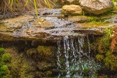 流动入岩石的小小瀑布瀑布在一个豪华的森林里 免版税库存照片