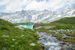 流动入湖的小河 免版税图库摄影