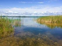 流动入第一个Mustus湖的河在萨斯喀彻温省 库存图片