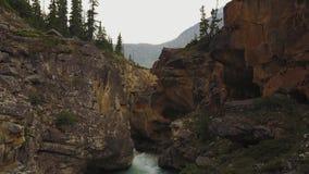 流动到弓湖,班夫国家公园,亚伯大,加拿大的峡谷的河 影视素材