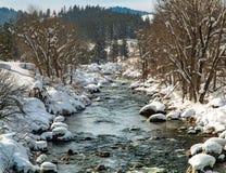 流动在冬天的特拉基河有河的一个看法 库存图片