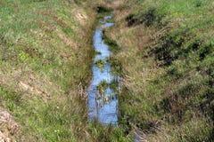 流动在地方森林的狭窄的清楚的水小河包围与未割减的部分地干草 免版税图库摄影
