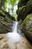 流动在山下的淡水小河 免版税库存照片