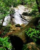 流动在山的一条岩石小河 库存照片