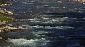 流动在岩石之间的春天河 股票视频