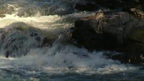 流动在岩石之间的春天河 影视素材