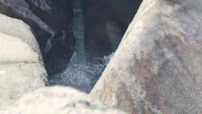 流动在岩石的山瀑布在河 流动在山的石河小河 飞溅在大石头的水流量 股票录像