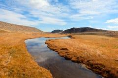 流动在干草原的河 免版税图库摄影