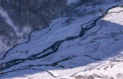 流动在树中的河风景看法在森林在冬天期间 免版税图库摄影