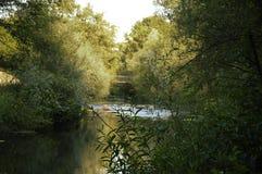流动在桥梁下的小河 免版税库存图片
