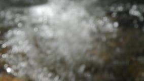 流动在河的模糊水和跟随焦点清除 影视素材