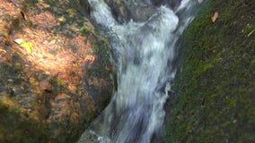 流动在热带森林小河河水的山河从流动在大石头的瀑布 影视素材