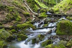 流动在生苔石头中的快速的山河 库存照片