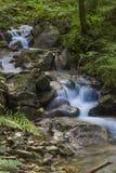 流动在生苔石头中的快速的山河 免版税库存图片