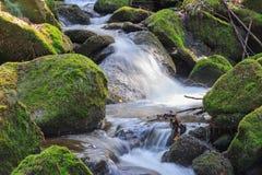 流动在石头之间的小河 免版税库存图片
