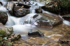 流动在秋天风景森林的美丽的柔滑的软的河瀑布 库存照片
