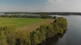 流动在绿色具球果森林、树和农业领域之间的一条美丽如画的淡水弯曲的河 股票录像