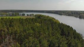 流动在绿色具球果森林、树和农业领域之间的一条美丽如画的淡水弯曲的河 影视素材