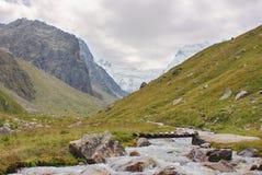 流动在高山草甸中的一条快速的河 免版税库存照片
