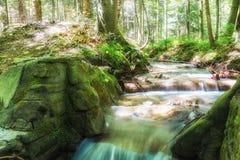 流动山的小河在阳光下 山小河ina小小河在森林里 免版税库存图片