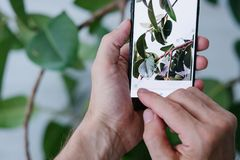 流动摄影艺术技术创新电话 库存图片